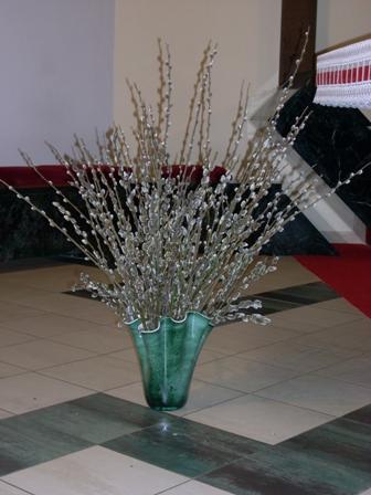 Kvetna Nedela
